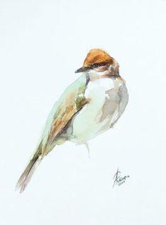 Watercolors, Bird, Animals, Design, Animales, Watercolor Paintings, Animaux, Watercolor Drawing, Water Colors