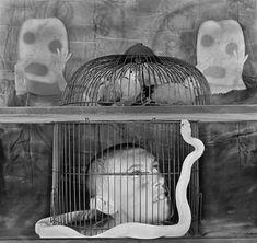 MAC USP - Roger Ballen: Transfigurações, fotografias 1968-2012