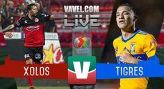 Xolos vs Tigres en vivo online en Liga MX 2017 (0-0) - VAVEL México
