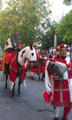 Medieval Parade Renaissance, Popular Culture, Anthropology, Folklore, My Books, Study, The Unit, Horses, Times