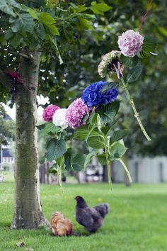 #Hortensia #Hydrangea #Bloemen #Flowers #Boeket #Bouquet