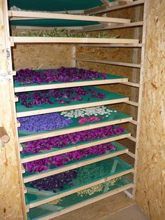 Get The Perfect Herb Garden With These Simple Tips Herb gardening is an excellent way to make sure that your family is getting the best produce that they can. Herb Farm, Herb Garden, Indoor Garden, Vegetable Garden, Food Dryer, Garden Projects, Diy Projects, Herb Drying Racks, Growing Herbs