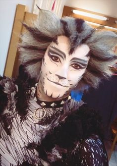 270 Best Cats that dont shed images Shed Images, Cats That Dont Shed, Jellicle Cats, Free To Use Images, Cats Musical, Image Cat, Cool Cats, High Quality Images, Musicals