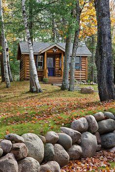 森林小木屋,麋鹿湖,密歇根州