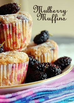 I have a tree full of berries, so going to try these! mulberry muffins