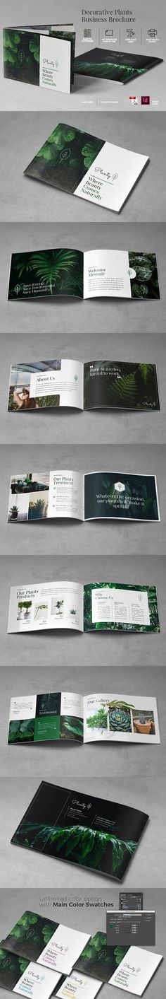 A5 Decorative Plants Brochure. Brochure Templates