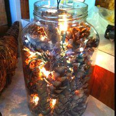 Pinecones & lights!