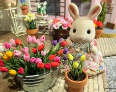 « « Older Post | Newer Post » »  Lately I can hear the birds chirping outside, to me, it is the sound of spring. Although I don't see flowers outside yet, my Sylvanian town is getting filled with flowers. The season setting of my town is spring to early summer, since I love …