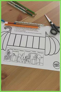 Toddler Learning Activities, Craft Activities For Kids, Science For Kids, Preschool Activities, Pumpkin Life Cycle, Homeschool Kindergarten, Classroom Crafts, Paper Crafts For Kids, Life Cycles