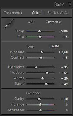 Mastering Lightroom:How To Use the Basic Panel