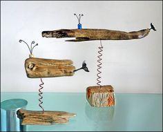 Driftwood balinalar ... Driftwood whales ... Sürü arkadan geliyor ...