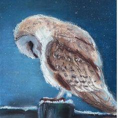 Pastel owl  Soft pastels, night, snow пастель сова