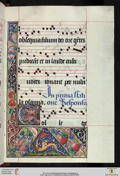 Cod. Sal. VIII,16: Cod. Sal. VIII,16 Processionale (Frankreich/ Burgund, 16. Jh.)