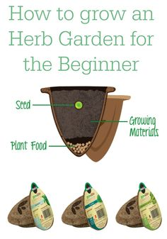 How to Grow a Herb Garden the Easy Way / Miss Information Blog