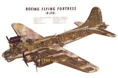 B-17 Cutaway