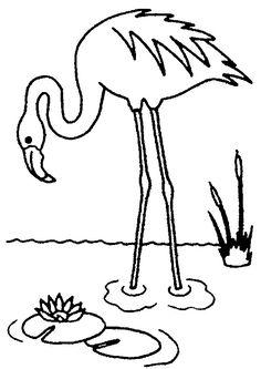 bildergebnis für flamingo vorlage   malvorlagen, ausmalen, malvorlagen tiere