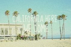 california, here we come.