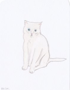 """White Cat Sitting"" by Ro"