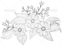 Flower Cosmos, Contours  #GraphicRiver         Flowers cosmos, petals and leaves, graphic monochrome contours, isolated  	 Vector EPS 8 plus AI CS 5 plus high-quality Jpeg. Editable vector file, containing only vector shapes. No gradients. No transparencies.     Created: 27February13 GraphicsFilesIncluded: JPGImage #VectorEPS #AIIllustrator Layered: No MinimumAdobeCSVersion: CS5 Tags: art #background #black #bloom #blooming #blossom #botanic #botany #bouquet #bud #contour #cosmos #decor…