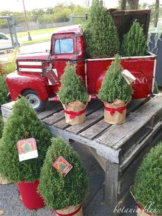 A Red Truck with a Green Tree Christmas Red Truck, Christmas Tree Lots, Christmas Garden, Christmas Swags, Christmas Makes, Country Christmas, Vintage Christmas, Christmas Holidays, Christmas 2019