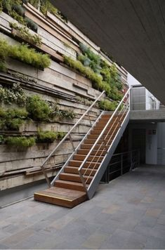 Green Wall / Zentro Office Building and Commercial - Gonzalez Moix Arquitectura Green Architecture, Architecture Details, Landscape Architecture, Landscape Design, Natural Architecture, Office Building Architecture, Architecture Panel, Office Buildings, Design Exterior