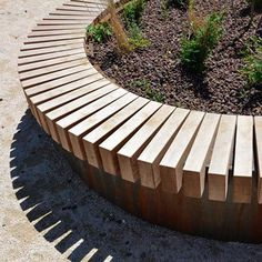 Streetlife: Rough&Ready Circular Tree Isles 5 of 12 Tree Seat, Tree Bench, Lawn Edging, Garden Edging, Garden Path, Landscape Materials, Landscape Design, Bench Around Trees, Tree Design On Wall