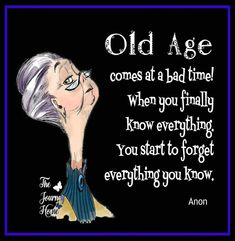 Super funny signs for women humor Ideas Funny Jokes For Adults, Silly Jokes, Hilarious Jokes, Old Age Humor, Aging Humor, Women Jokes, Senior Humor, Aging Quotes, Funny Cartoons
