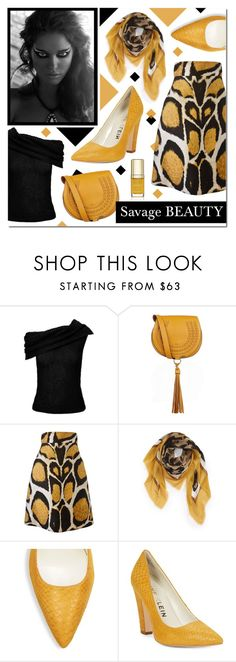 """Wild Side"" by drinouchou ❤ liked on Polyvore featuring Roland Mouret, Chloé, Giles, Burberry, Anne Klein and Dolce&Gabbana"