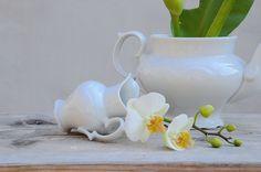 cz: Czech oldest porcelain factory Haas and Czjzek Porcelain, Vase, Education, Home Decor, Porcelain Ceramics, Decoration Home, Room Decor, Flower Vases, Teaching