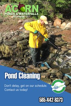 Read details about fish pond & water feature cleaning, maintenance & repair services in the Rochester (NY) area by Acorn Ponds & Waterfalls