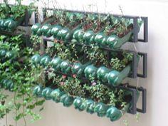 plantas en botellas de plástico
