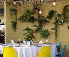 Letland | 5x 'good food'en koffie in Riga Riga, Tent, Good Food, Restaurant, Patio, Table Decorations, Outdoor Decor, Furniture, Home Decor