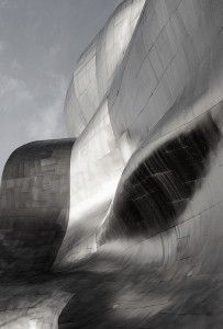 Frank Gehry Beautiful!!