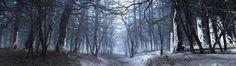 nature #4k wallpaper (3840x1080)