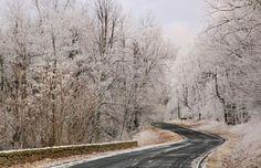 Skyline Drive near Swift Run Gap, Shenandoah National Park, Va. (© Pat & Chuck Blackley/Alamy)