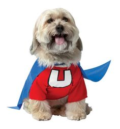 Cali is so going to be Underdog for Halloween this year!