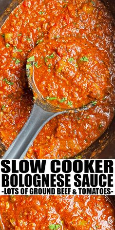 SLOW COOKER BOLOGNESE SAUCE RECIPE- Easy crockpot bolognese sauce, homemade with simple ingredients. Loaded with ground beef, tomatoes, carrots, celery and lots of Italian herbs. Best served with spaghetti. From SlowCookerFoodie.com Slow Cooker Bolognese Sauce, Slow Cooker Pasta, Best Slow Cooker, Crock Pot Slow Cooker, Slow Cooker Recipes, Crockpot Recipes, Amazing Recipes, Yummy Recipes, Easy Dinner Recipes