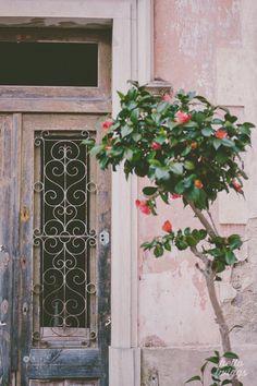 Sintra Photos, Travel Photography, Visit Sintra, Europe Photography, Portugal Photos, Photography by Claudia Casal // Hello Twiggs