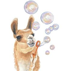 Watercolor PRINT Llama Watercolor, Bubble Blowing, Nursery Art, 11x14... ❤ liked on Polyvore featuring home, home decor, wall art, watercolour painting, water colour painting, watercolor wall art, water color painting and watercolor painting