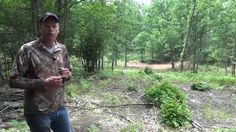 Best Way to Prep Small in the Woods Food Plots for Deer