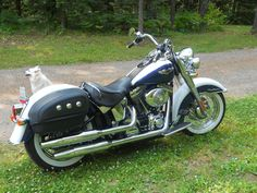 2006 Harley Davidson Softail Deluxe, Price:$11,000. Mercer, Wisconsin #hd4sale #motorcycle