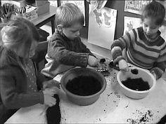 Semer des graines cycle 1 la main à la pâte - F découvrir les graines, pratiquer des semis afin de mettre en place des plantations dans un coin « jardin » de la cour de l'école.