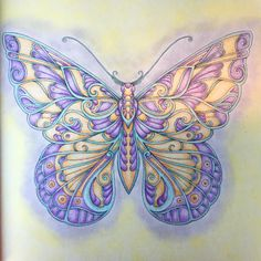 Take a peek at this great artwork on Johanna Basford's Colouring Gallery! Butterfly Drawing, Butterfly Wallpaper, Colouring Pages, Coloring Books, Adult Coloring, Paper Butterflies, Beautiful Butterflies, Magical Jungle Johanna Basford, Johanna Basford Coloring Book
