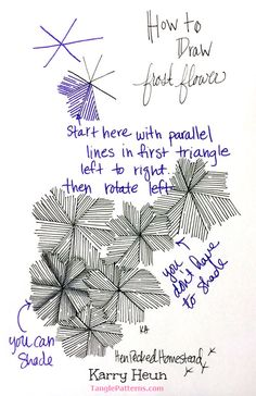Online instructions for drawing Karry Heun's Zentangle® pattern: Frost Flower.