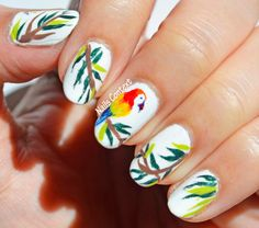 Pretty Parrot Nails by Nails Context #tropical #parrot #parrotnailart #nails #nailpolish #nailart #naildesigns