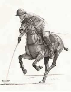 Caii in lumea artelor. Horse drawings (this one drawn by Walter Caldeira)