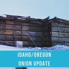 The Idaho/Oregon Onion shipping areas received anywhere from 8 to 20 inches of snow over the last 48 hours and is causing havoc. The forecast is calling for more snow through Monday then very cold temperatures all through next week. Trucks are at a stand still waiting for the interstates to open. Some Packing houses are closed and are in the process of removing snow and ice. There are reports of a couple packing facilities and storages full of product that have collapsed. Luckily no reports…