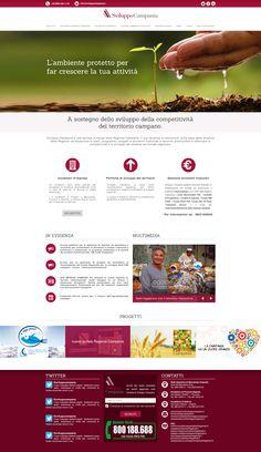 Bozza - Sviluppo Campania restyle: Web Designer