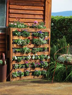 Palet planter. Might do this with over the rail planters this year. Use raised bed mix for soil. Stain planter to match deck & fence. Put gravel stepping area or solar stepping stones between planters so can still access under deck.