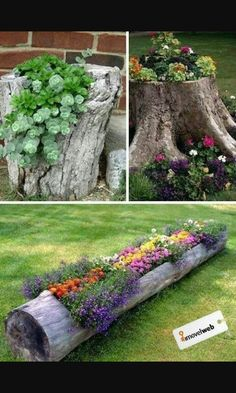 Garden Ideas and DIY Backyard Projects! Today we present you one collection of The BEST Garden Ideas and DIY Backyard Projects offers inspiring backyard ideas. These are amazing projects that you…More Outdoor Projects, Garden Projects, Diy Projects, Diy Backyard Projects, Farm Projects, Auction Projects, House Projects, Furniture Projects, Furniture Decor